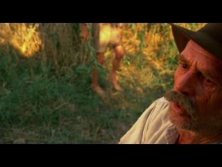 Двадцатый Век / Novecento 1/2 (1976 - Италия, Франция, ФРГ), режиссёр